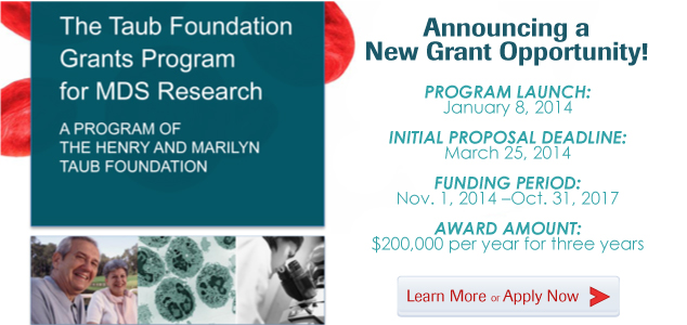 Taub Foundation Grant Opportunity