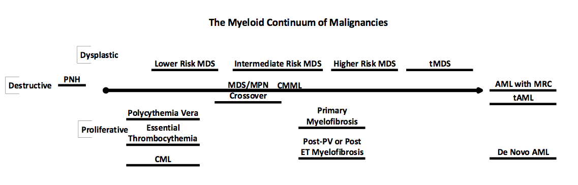 What Is Mds >> What Is Aml Mds Foundation